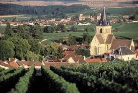 Landscape in Champagne, France.