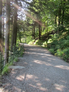 Trail from Bergen to Floyen