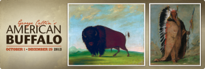 Bull Buffalo by George Caitlin