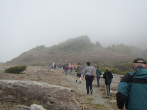 The hike began along the beach in the refreshing fog.