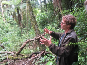 Tim Short guiding us on bush walk at Mount Tutu Ecosanctuary