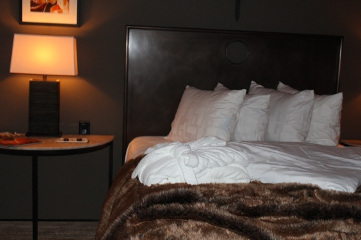 Comfort at Hotel Domestique
