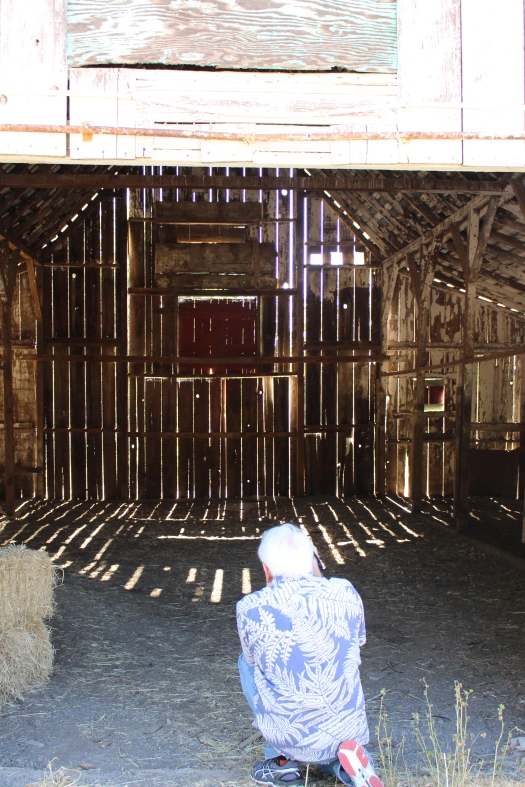 Bill Reid taking a photo of the classic barn at Chowdown Farm.
