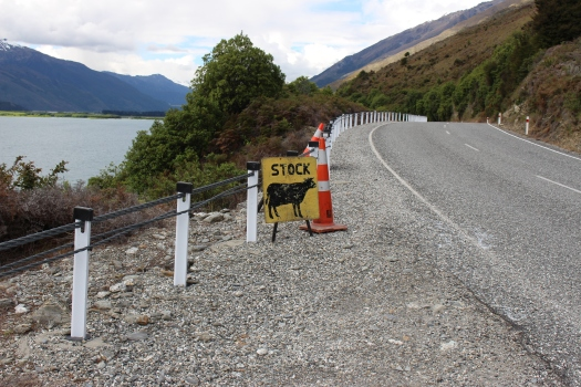 Cattle crossings are called Cattle stops.