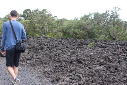Rangitoto trail