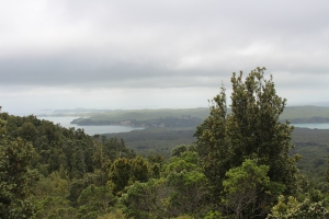 View from Rangitoto includes nearby Motutapu.