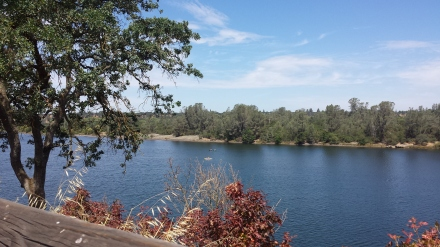 Looking across to Negro Bar on Lake Natoma.