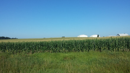 Corn fields and more corn fields make up the dominant view.