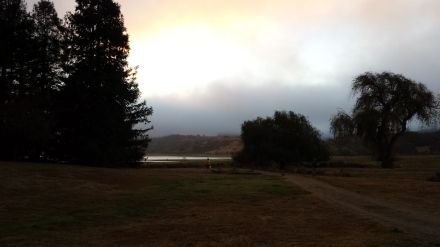 Misty morning start for the Jensie Gran Fondo  at Stafford Lake in Marin County